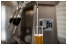 Forrest Brewery 2 300 (1)